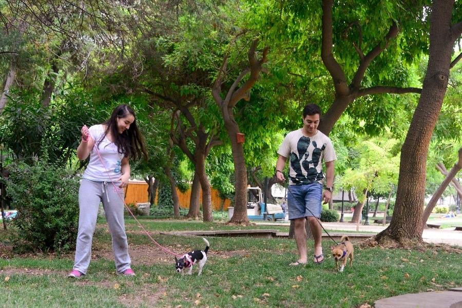 Parque Bustamante: