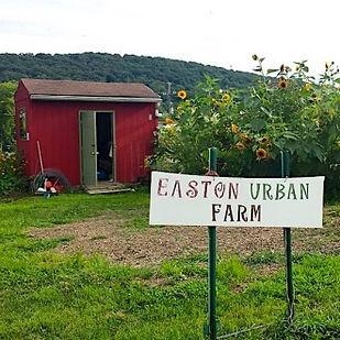 easton urban farm 1.jpg