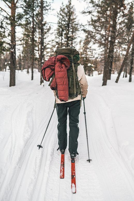 Lapland grønrejs udflugt dagstur Sverige Norge Togrejse