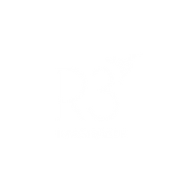 R3 Imaginable_Transparent.png