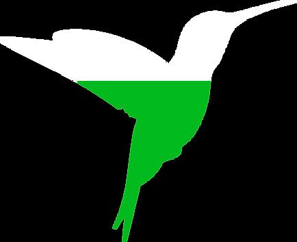 Colibri_Vert_blanc.png