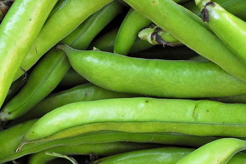 Kent Broad Beans 500g