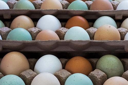 6 Mixed Free Range Folly Eggs
