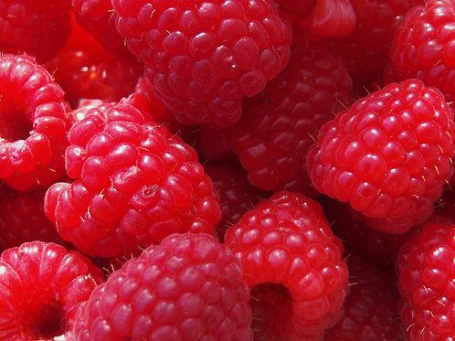 Local Kent Raspberry Punnet