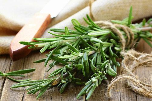 Fresh Cut Herbs Large 100g Pack