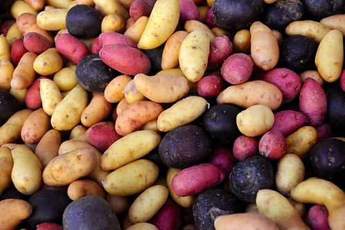 Mixed Exotic Potatoes 1kg Morghew Estate