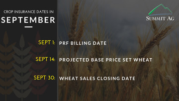 Important Dates for the Month of September