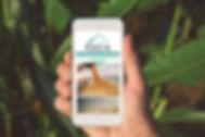 Iphone SA App.jpg