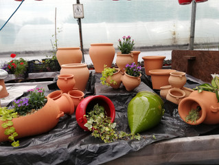 Our new range of terracotta pots