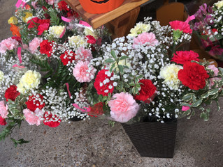 This weeks special offer is from Blossoms Floristry