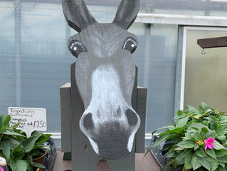 Our herd of donkey planters have all trotted off to new homes