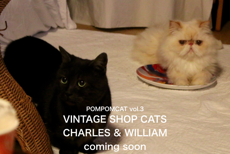 CHARLES & WILLIAM-3 POMPOMCAT