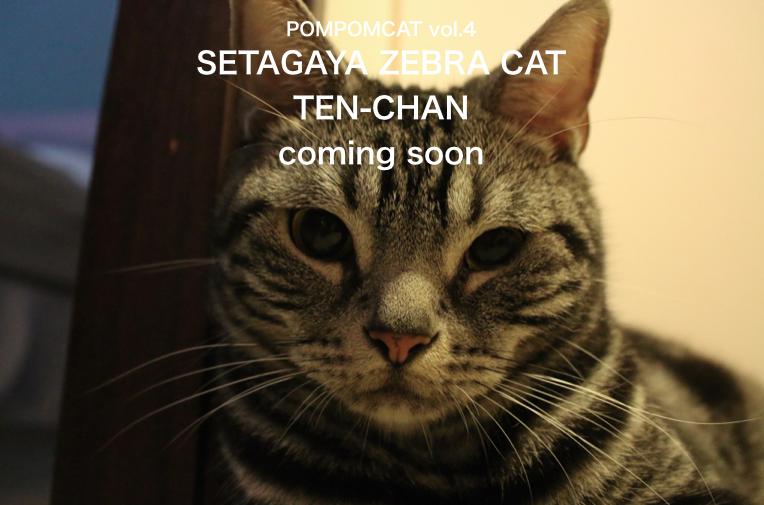 TEN-CHAN POMPOMCAT1