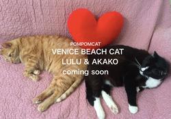 LULU & AKAKO
