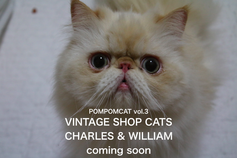 CHARLES & WILLIAM-2 POMPOMCAT
