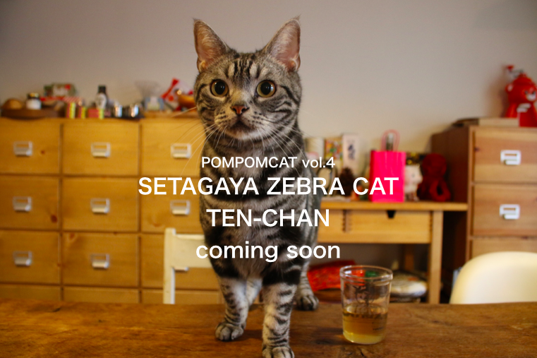 TEN-CHAN POMPOMCAT5