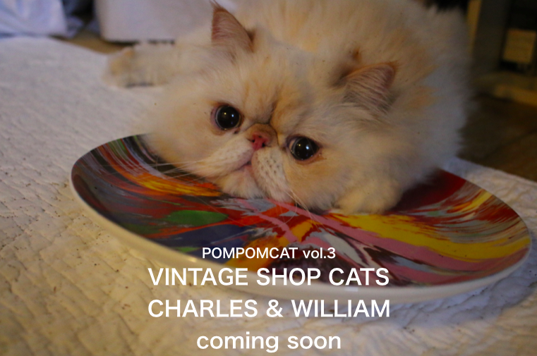CHARLES & WILLIAM-4 POMPOMCAT