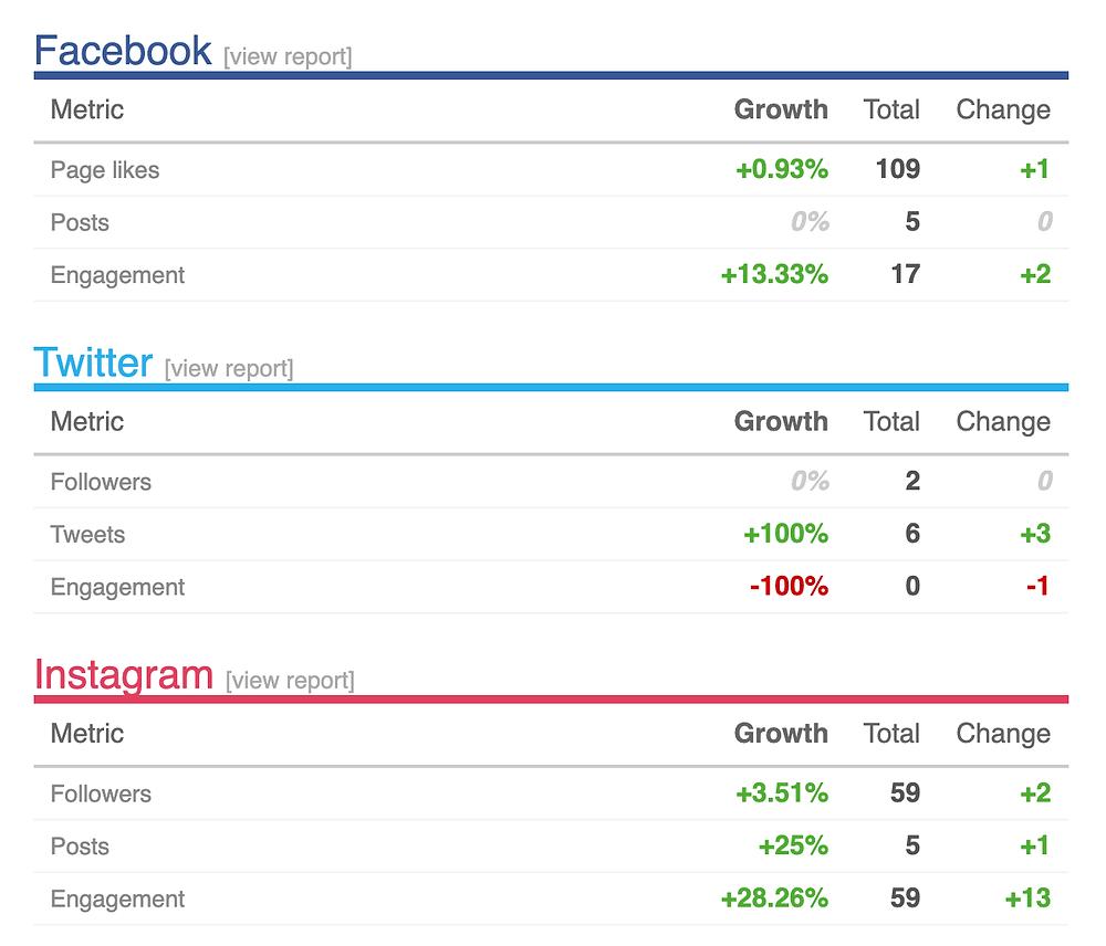 Social media growth report