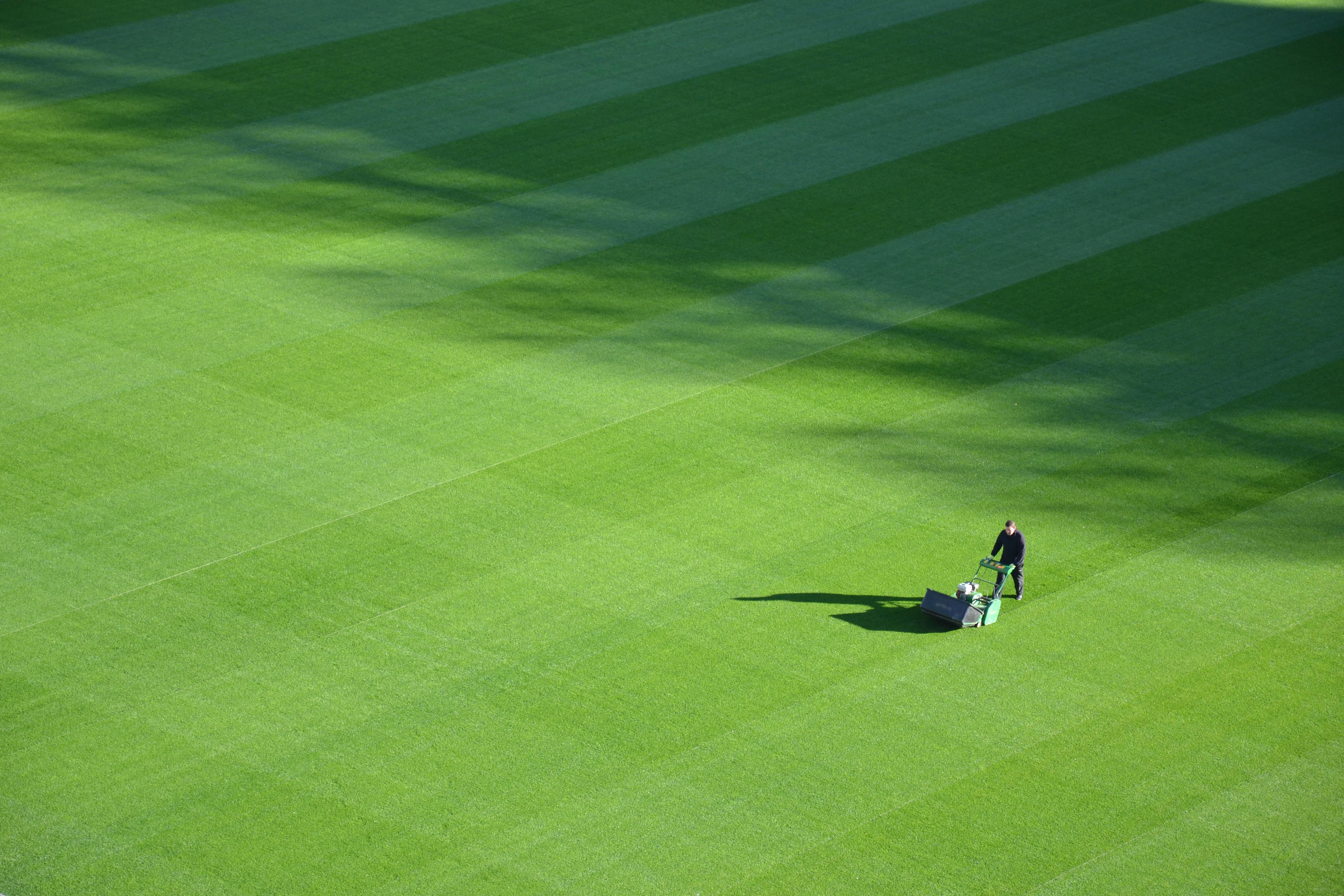 Large Lawn