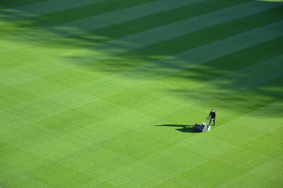 Velký trávník