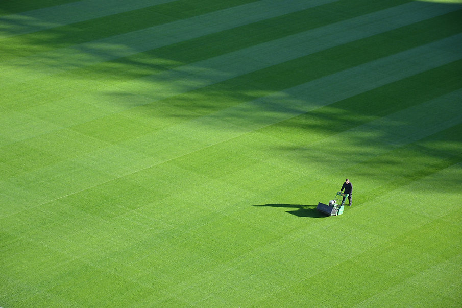 Grande pelouse
