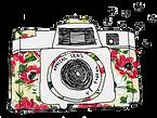 logo-boitier-fleuri.png