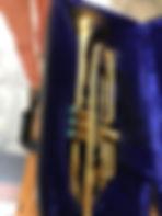 Horn - 1.JPG