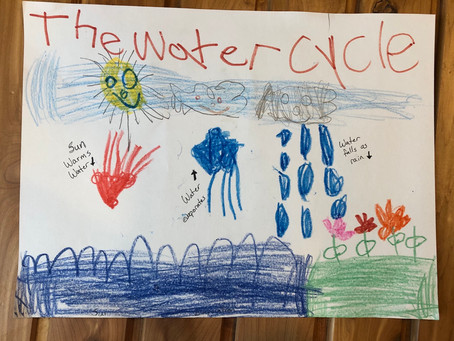 Earth's Water Cycle; Our Role