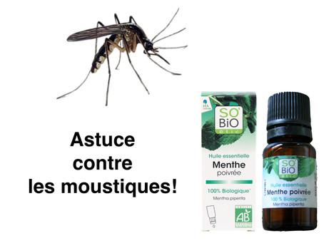 Comment calmer les piqûres de moustiques ?