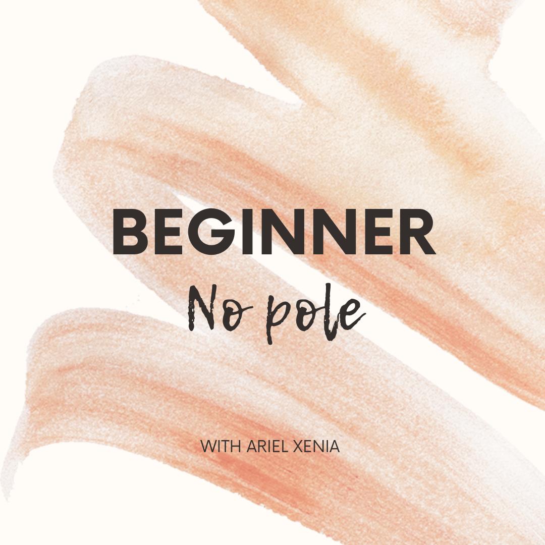 Beginner - No Pole Class