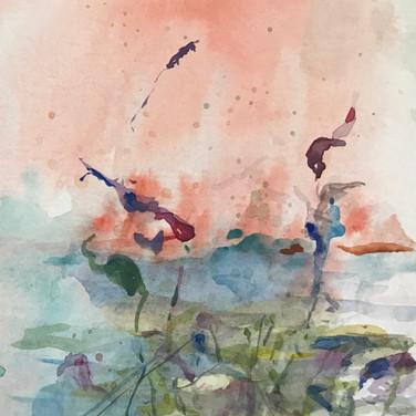2017 Crane Pond 1