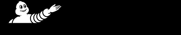 LOGO FONDATION MICHELIN - Horizontal - N