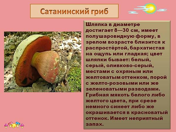 0016-016-Sataninskij-grib.jpg
