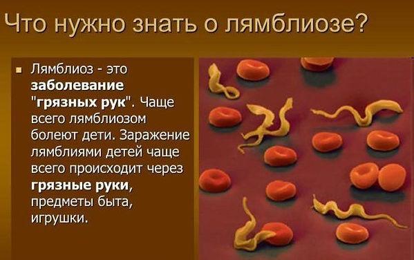 kzvkbjp-e-ltntq-1.jpg