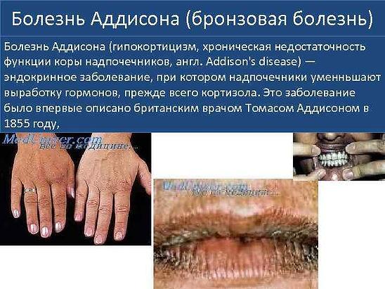83303976_167437221.pdf-54.jpg