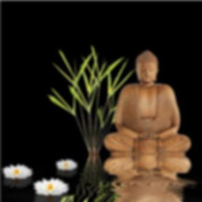 fototapete-1236-zen-buddha-250x250-einze