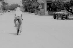 The cyclist.jpg