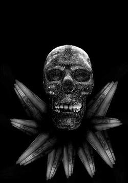 Cráneos del Parque Central