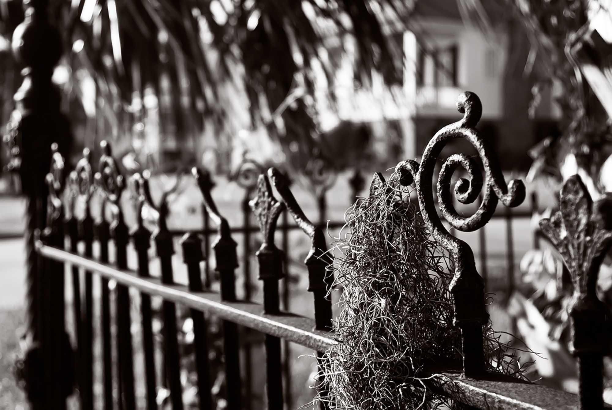 Haunted  Fence 030bw72