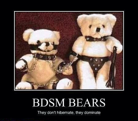 BDSM-bears.jpg