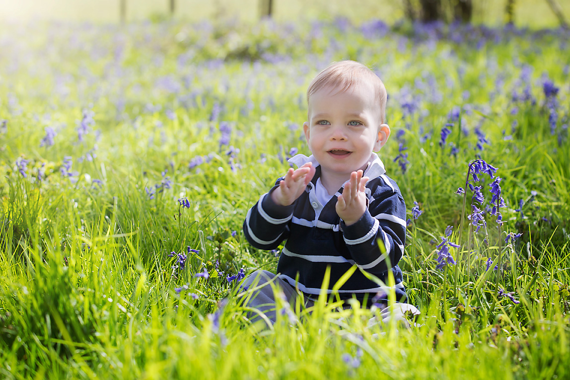 Baby sitting in Bluebells Borstall