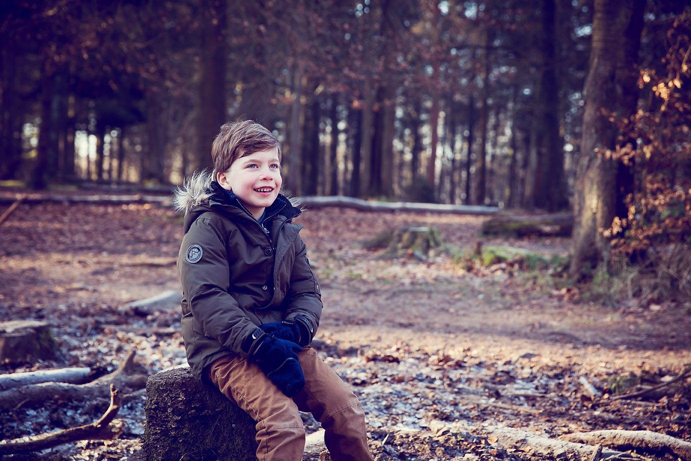 Boy sitting on tree Wendover Woods