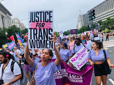 trans_rights_washington_march.jpeg