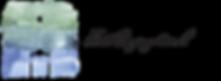 firstcongo_logo.png
