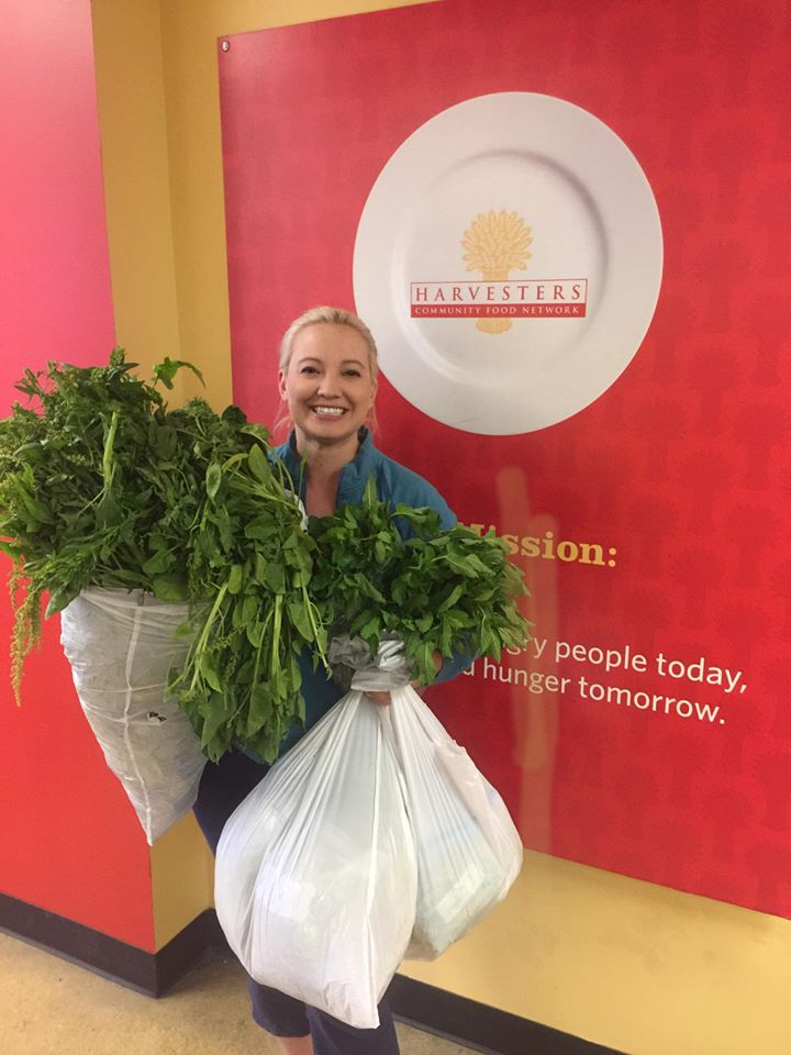 Donated 34lbs of spinach