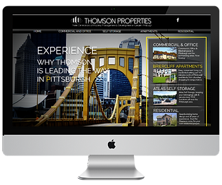 thomson website for site.png