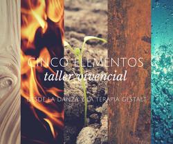 Taller Cinco Elementos