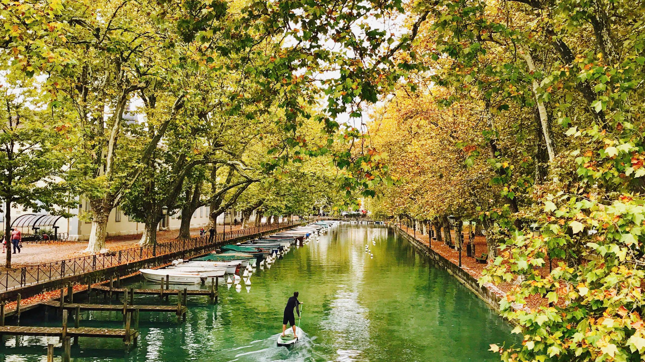paddle automne