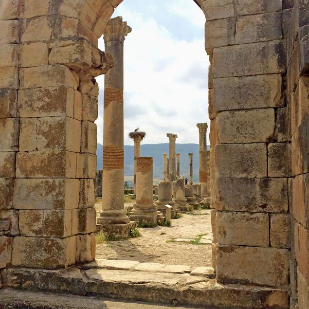 Ruines romaine Volubilis