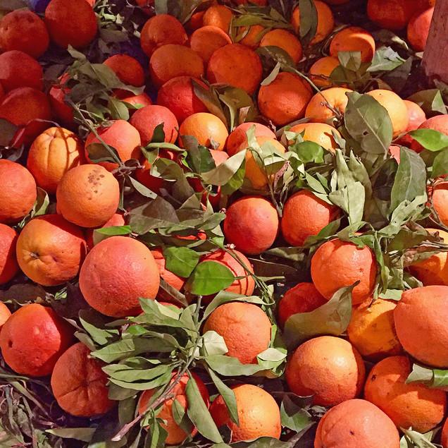 Orange_médina_Fès